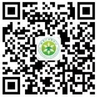 zrg2021062409.png